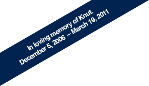 In loving memory of Knut. December 5, 2006  � March 19, 2011